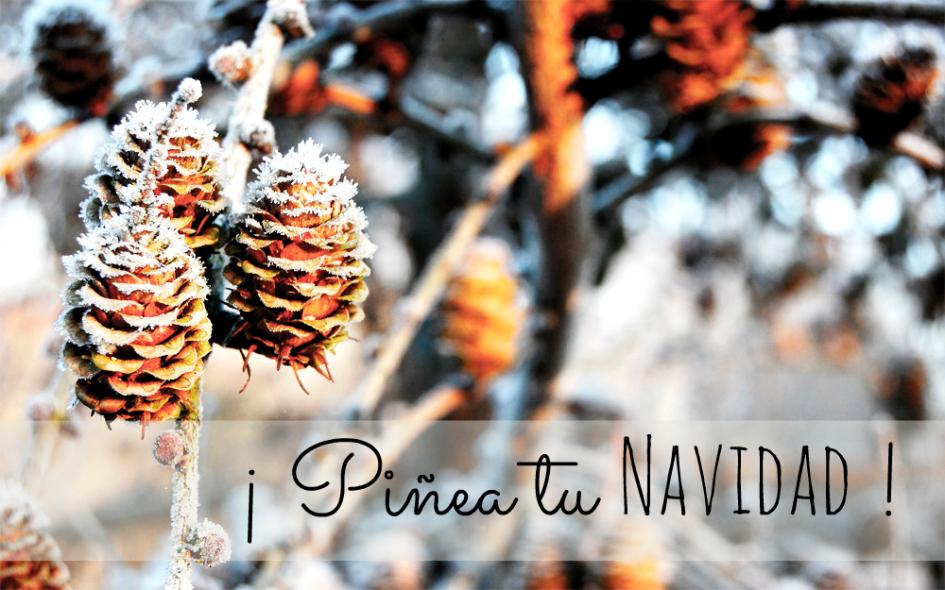 decorar con piñas la navidad_14